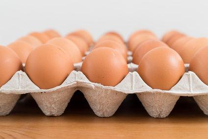 Du fipronil dans des œufs?