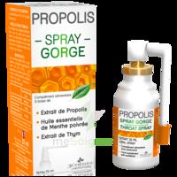 3 CHENES PROPOLIS Spray gorge Fl/25ml à Poitiers