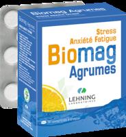 Lehning Biomag Comprimés à Croquer Agrumes B/90 à Poitiers