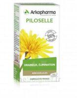 Arkogélules Piloselle Gélules Fl/45 à Poitiers