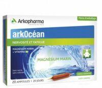 Arkocean Magnesium Marin Solution Buvable Caramel 20 Ampoules/10ml à Poitiers
