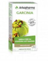 Arkogélules Garcinia Gélules Fl/45 à Poitiers