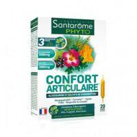 Santarome Bio Confort articulaire Solution buvable 20 Ampoules/10ml à Poitiers