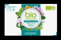 Nutrisanté Infusions Bio Tisane Confort de la gorge 20 Sachets