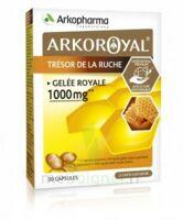 Arkoroyal Gelée Royale 1000 Mg Caps B/30 à Poitiers
