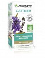 Arkogélules Gattilier Gélules Fl/60 à Poitiers