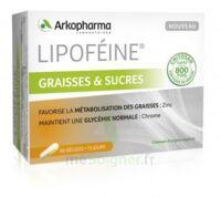 Lipofeine Graisse Et Sucres Gélules B/60 à Poitiers