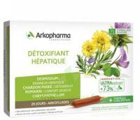 Arkofluide Bio Ultraextract Solution buvable détoxifiant hépatique 20 Ampoules/10ml à Poitiers