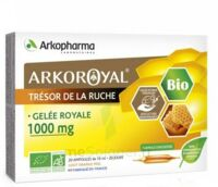 Arkoroyal Gelée Royale Bio 1000 Mg Solution Buvable 20 Ampoules/10ml à Poitiers