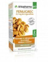 Arkogélules Fenugrec Bio Gélules Fl/40 à Poitiers