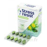 Stress Resist Comprimés Stress & fatigue B/30 à Poitiers