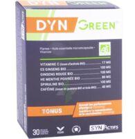 Synactifs Dyngreen Bio Gélules B/30 à Poitiers