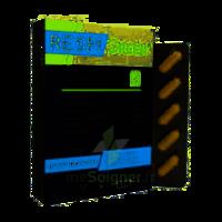 Synactifs Respigreen Bio Gélules B/10