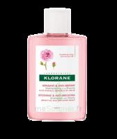 Klorane Shampoing Apaisant & Anti-irritant à La Pivoine 25ml à Poitiers