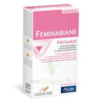 Pileje Feminabiane Périnatal 28 Gélules Blanches Et 28 Gélules Jaunes à Poitiers