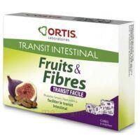 ORTIS FRUITS & FIBRES Cube à mâcher transit facile B/12 à Poitiers