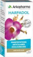 Arkogelules Harpagophyton Gélules Fl/150 à Poitiers