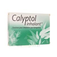CALYPTOL INHALANT, émulsion pour inhalation par fumigation à Poitiers