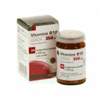 VITAMINE B12 GERDA 250 microgrammes, comprimé sécable à Poitiers
