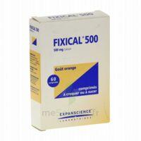 FIXICAL 500 mg, comprimé à croquer ou à sucer à Poitiers
