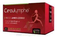 Santé Verte Circulymphe Triple Actions B/60 à Poitiers