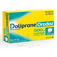 DOLIPRANEORODOZ 500 mg, comprimé orodispersible à Poitiers