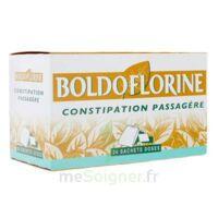 BOLDOFLORINE, mélange de plantes pour tisane en sachet-dose B/24 à Poitiers