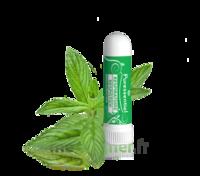 PURESSENTIEL RESPIRATOIRE Inhalation nasal 19 huiles essentielles à Poitiers