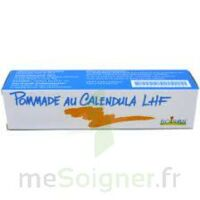 CALENDULA LHF POM T/20G à Poitiers