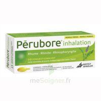 PERUBORE Caps inhalation par vapeur inhalation Plq/15 à Poitiers