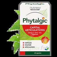 Phytalgic Capital Articulations Caps B/90 à Poitiers