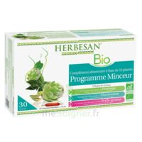 Herbesan Phyto Guarana Solution buvable brûle graisse bio 20 Ampoules/15ml à Poitiers