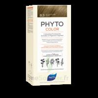 Phytocolor Kit Coloration Permanente 8.3 Blond Clair Doré à Poitiers