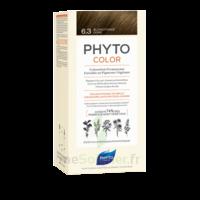 Phytocolor Kit Coloration Permanente 6.3 Blond Foncé Doré à Poitiers
