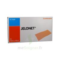 JELONET, 10 cm x 40 cm , bt 10 à Poitiers