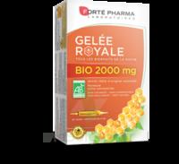 Forte Pharma Gelée royale bio 2000 mg Solution buvable 20 Ampoules/15ml à Poitiers