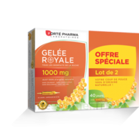 Forte Pharma Gelée Royale 1000 Mg Solution Buvable 2*b/20 Ampoules/10ml à Poitiers