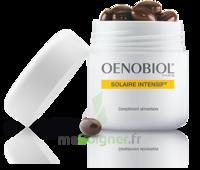 Oenobiol Solaire Intensif Caps peau normale Pot/30 à Poitiers