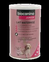 Biocanina Lait poudre maternisé B/400g à Poitiers