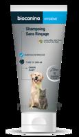 Biocanina Shampooing Sans Rinçage 200ml à Poitiers