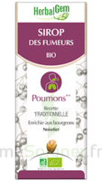 Herbalgem Sirop bio des fumeurs 150ml à Poitiers