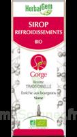 Herbalgem Sirop bio refroidissement 150ml à Poitiers