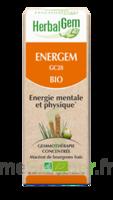 Herbalgem Energem Solution buvable bio Fl cpte-gttes/30ml à Poitiers