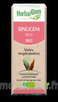 Herbalgem Sinugem Solution buvable bio Spray/15ml à Poitiers
