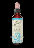 Fleurs De Bach® Original Beech - 20 Ml à Poitiers
