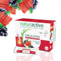 Naturactive Phytothérapie Fluides Solution Buvable Circulation 2b/20 Sticks/10ml à Poitiers