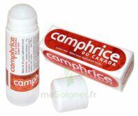 CAMPHRICE DU CANADA 4 % Bâton pour application locale Stick/30g à Poitiers