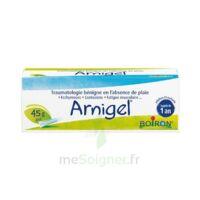 Boiron Arnigel Gel T(alumino-plastique)/45g à Poitiers