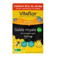Vitaflor Bio Gelée Royale 1500mg Solution Buvable 30 Ampoules/15ml à Poitiers
