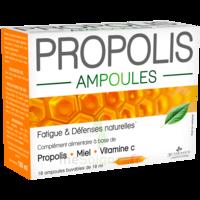 3 CHENES PROPOLIS Solution buvable 10 Ampoules/10ml à Poitiers